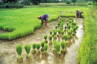 ClimatChangeVietnam